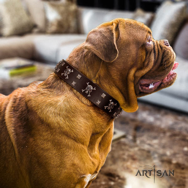 Dogue de Bordeaux handy use dog collar of fashionable genuine leather