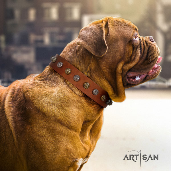 Dogue de Bordeaux dog collar of exceptional quality leather for comfy wearing