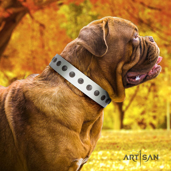 Dogue de Bordeaux trendy full grain natural leather dog collar