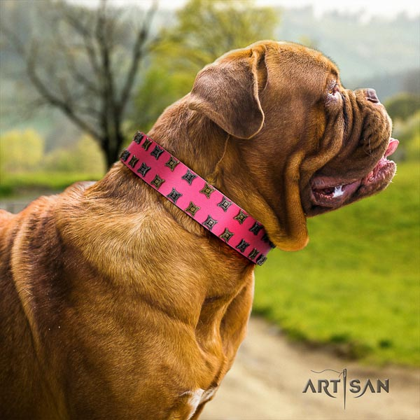 Dogue de Bordeaux easy wearing dog collar of designer natural leather
