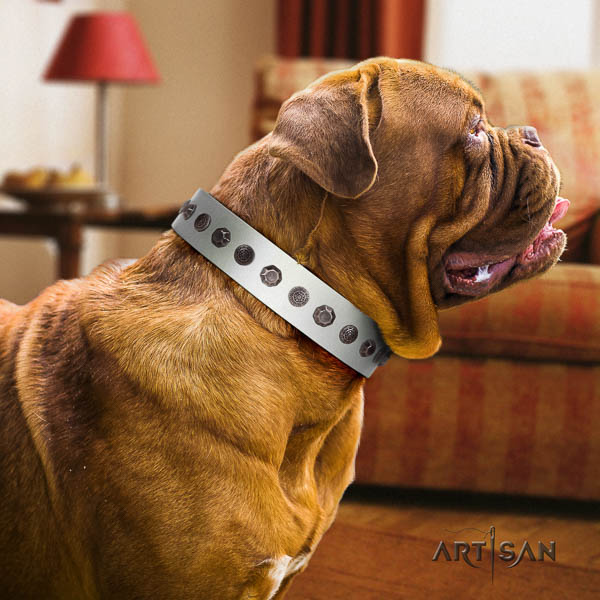 Dogue de Bordeaux designer full grain natural leather dog collar