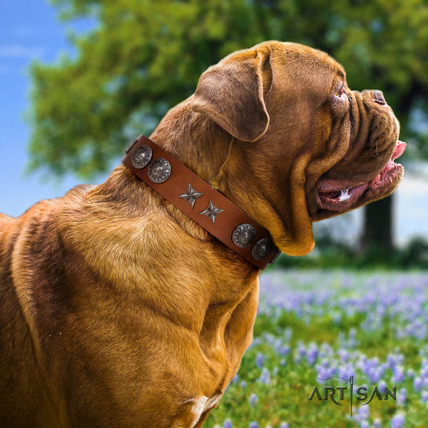 Dogue de Bordeaux inimitable full grain leather dog collar