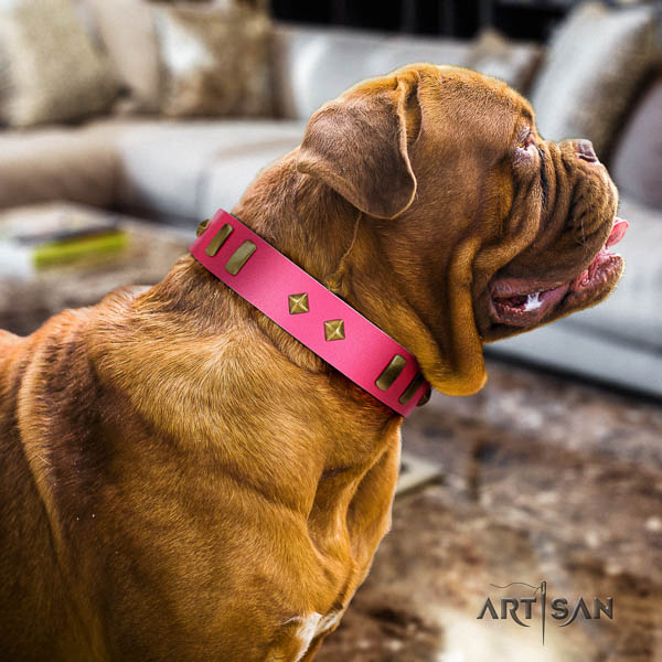 Dogue de Bordeaux handy use dog collar of top notch quality genuine leather