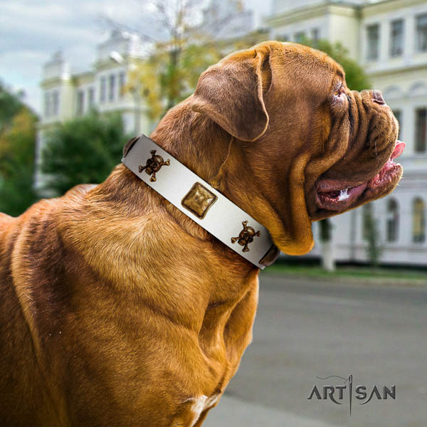 Dogue de Bordeaux everyday walking dog collar of designer natural leather
