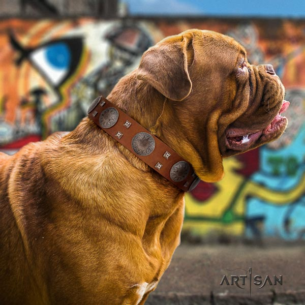 Dogue de Bordeaux best quality full grain genuine leather dog collar
