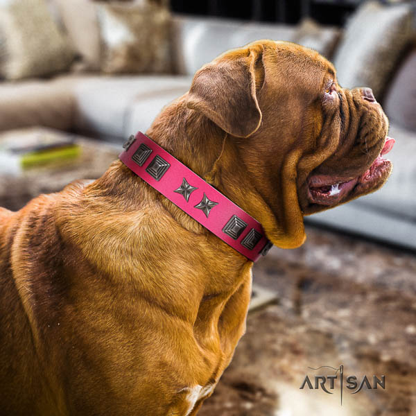 Dogue de Bordeaux inimitable leather dog collar