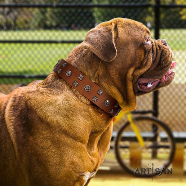 Dogue de Bordeaux comfortable natural genuine leather dog collar