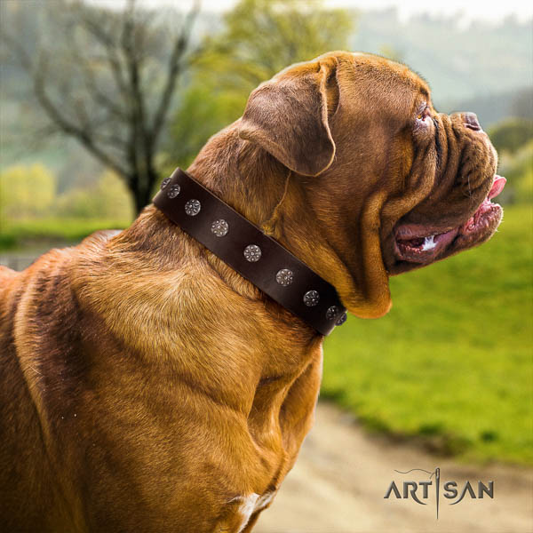 Dogue de Bordeaux handcrafted leather dog collar
