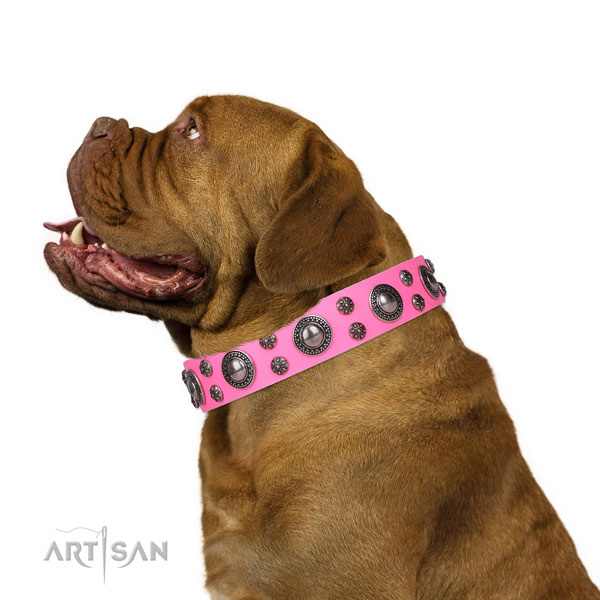 Dogue de Bordeaux full grain leather collar with durable D-ring for fancy walking