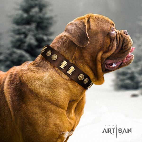 Dogue de Bordeaux incredible full grain genuine leather collar for daily walking