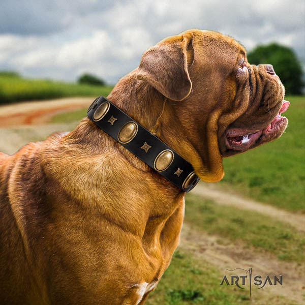 Dogue de Bordeaux handy use dog collar of best quality genuine leather