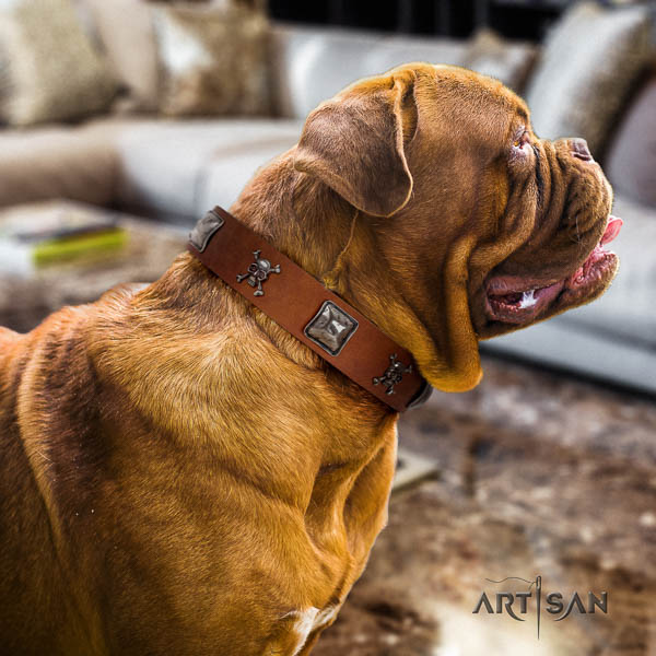 Dogue de Bordeaux everyday use dog collar of soft leather