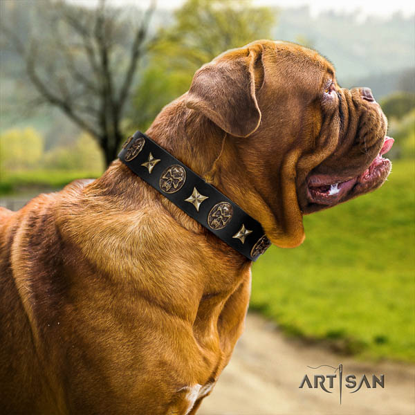 Dogue de Bordeaux basic training dog collar of remarkable quality leather