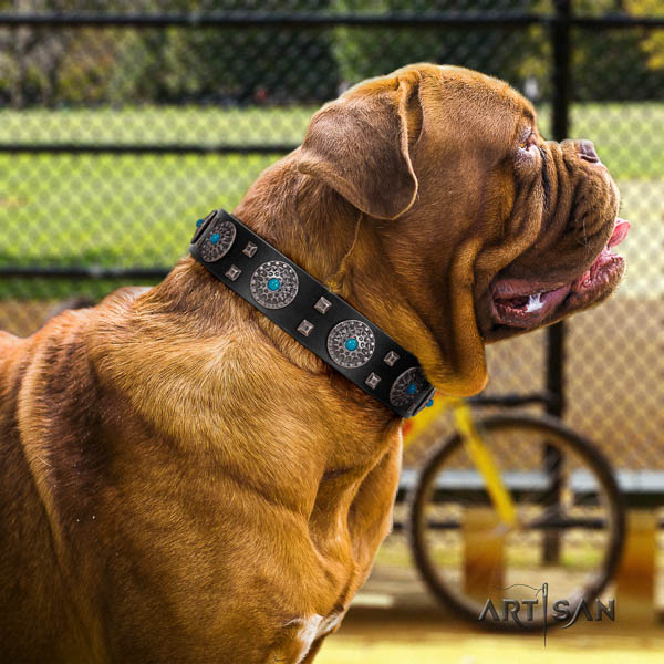 Dogue de Bordeaux unique genuine leather dog collar