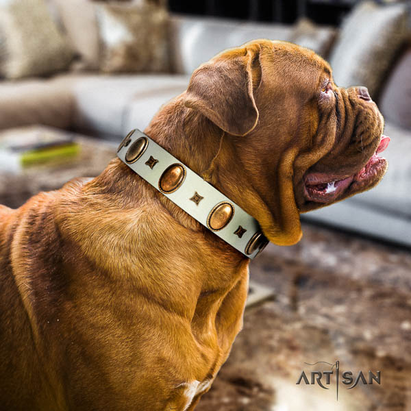 Dogue de Bordeaux easy wearing dog collar of soft natural leather