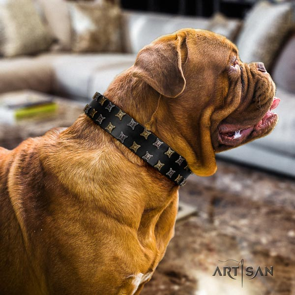 Dogue de Bordeaux easy wearing dog collar of fine quality genuine leather
