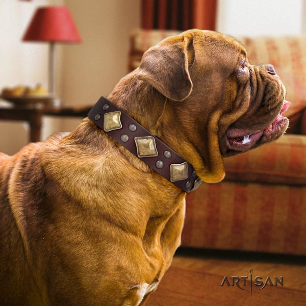 Dogue de Bordeaux significant natural genuine leather collar for comfy wearing