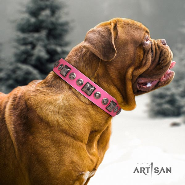 Dogue de Bordeaux decorated leather collar with rust-proof D-ring