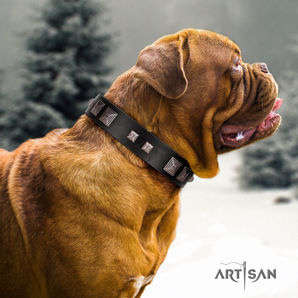 Dogue de Bordeaux basic training dog collar of flexible genuine leather