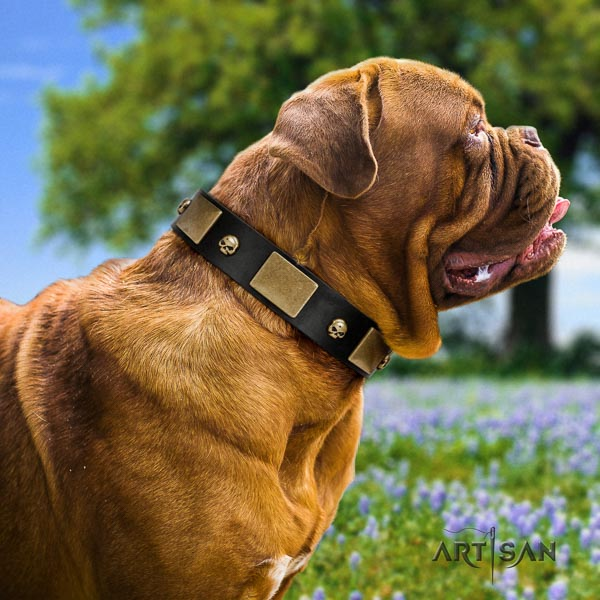 Dogue de Bordeaux daily walking dog collar of soft genuine leather