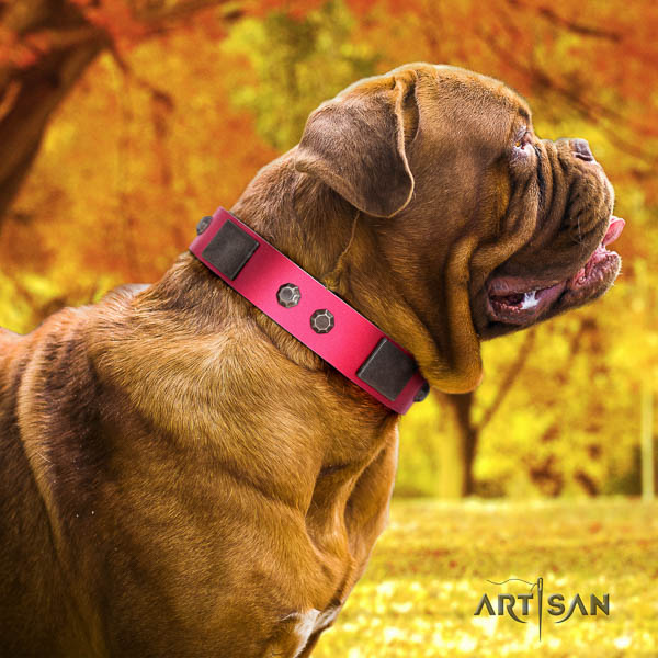 Dogue de Bordeaux perfect fit full grain genuine leather dog collar