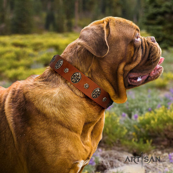 Dogue de Bordeaux everyday walking dog collar of soft natural leather