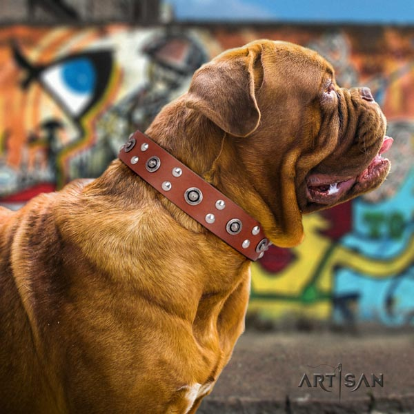 Dogue de Bordeaux awesome full grain genuine leather collar for everyday walking
