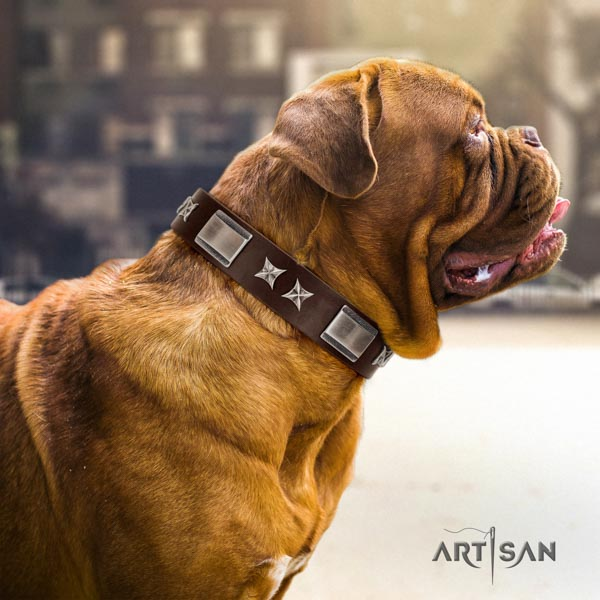 Dogue de Bordeaux top notch genuine leather collar for easy wearing
