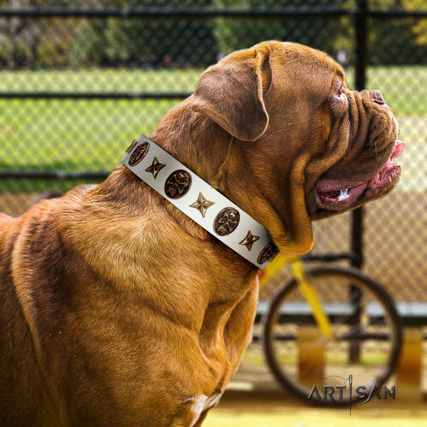 Dogue de Bordeaux handy use dog collar of extraordinary quality genuine leather
