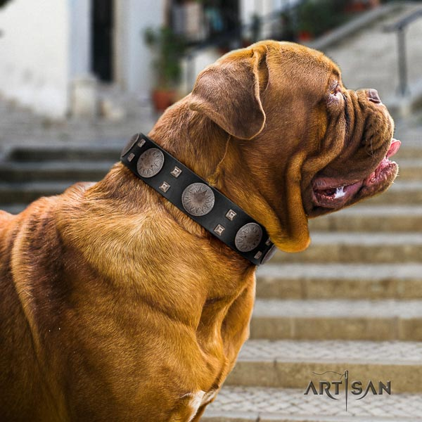 Dogue de Bordeaux easy adjustable full grain leather dog collar