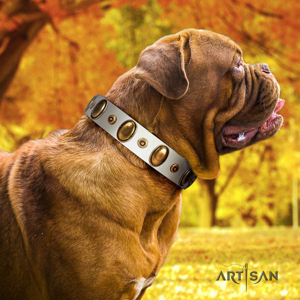 Dogue de Bordeaux walking dog collar of top quality genuine leather