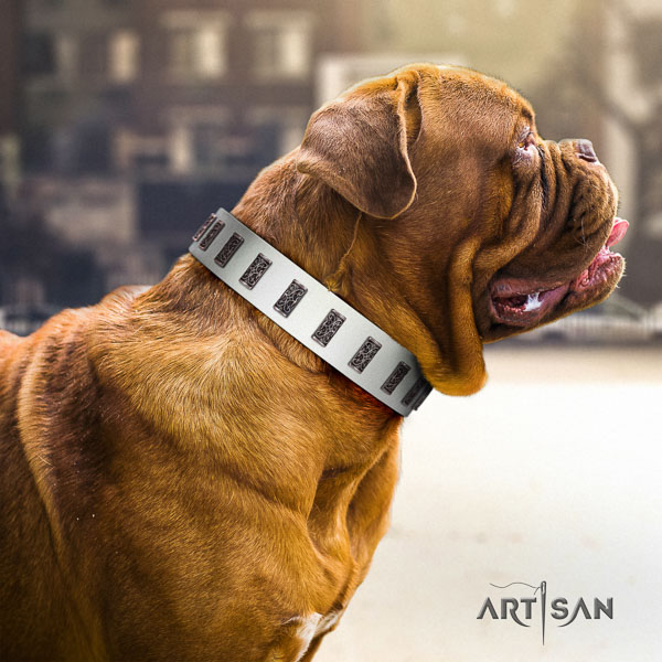 Dogue de Bordeaux stylish full grain natural leather dog collar