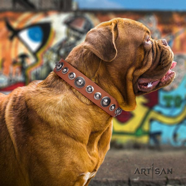 Dogue de Bordeaux embellished full grain natural leather collar with rust-proof hardware