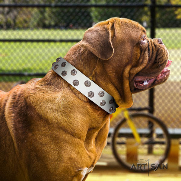 Dogue de Bordeaux dog collar of extraordinary quality genuine leather for walking