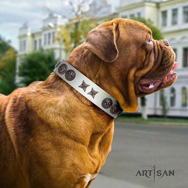 Dogue de Bordeaux comfortable full grain natural leather dog collar