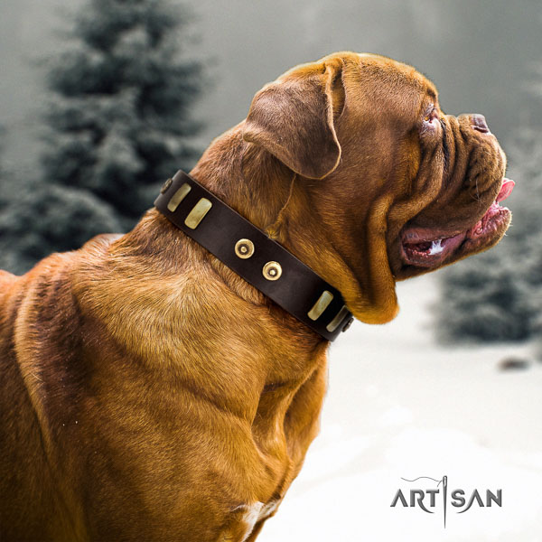Dogue de Bordeaux walking dog collar of top notch quality natural leather