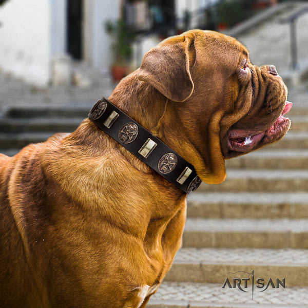 Dogue de Bordeaux daily walking dog collar of soft natural leather