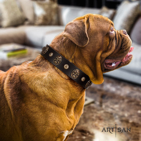 Dogue de Bordeaux handy use dog collar of exquisite quality leather