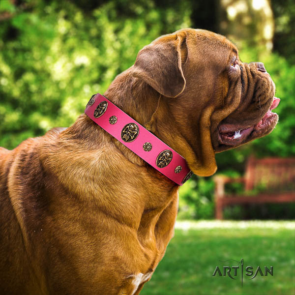 Dogue de Bordeaux everyday walking dog collar of comfortable leather