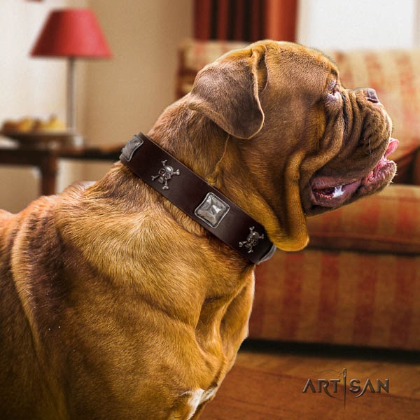 Dogue de Bordeaux handy use dog collar of remarkable quality natural leather