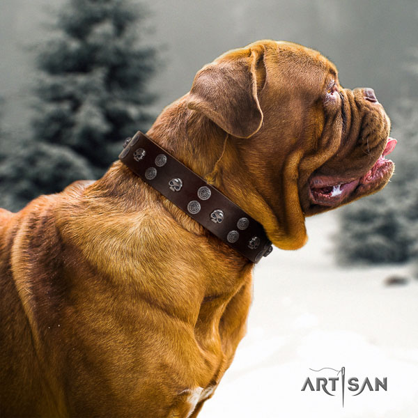 Dogue de Bordeaux easy wearing full grain genuine leather dog collar