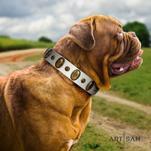 Dogue de Bordeaux fancy walking dog collar of fine quality leather