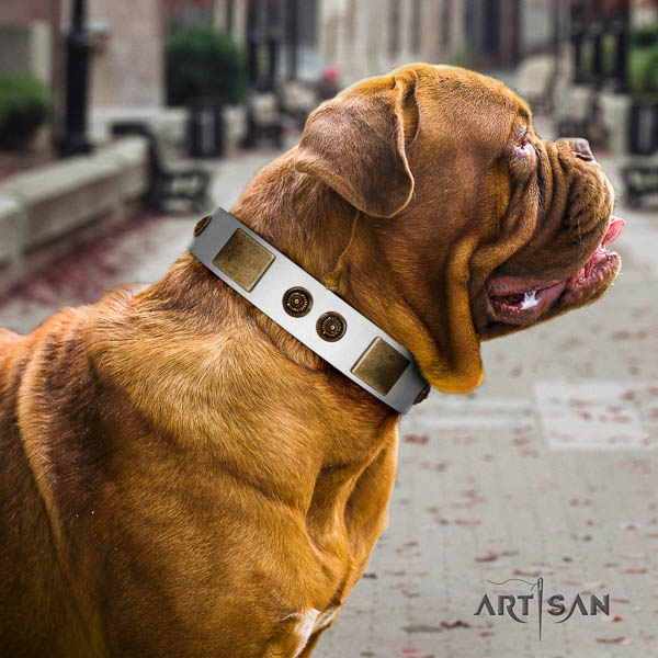 Dogue de Bordeaux walking dog collar of awesome quality natural leather