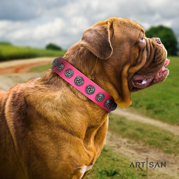 Dogue de Bordeaux exceptional genuine leather dog collar