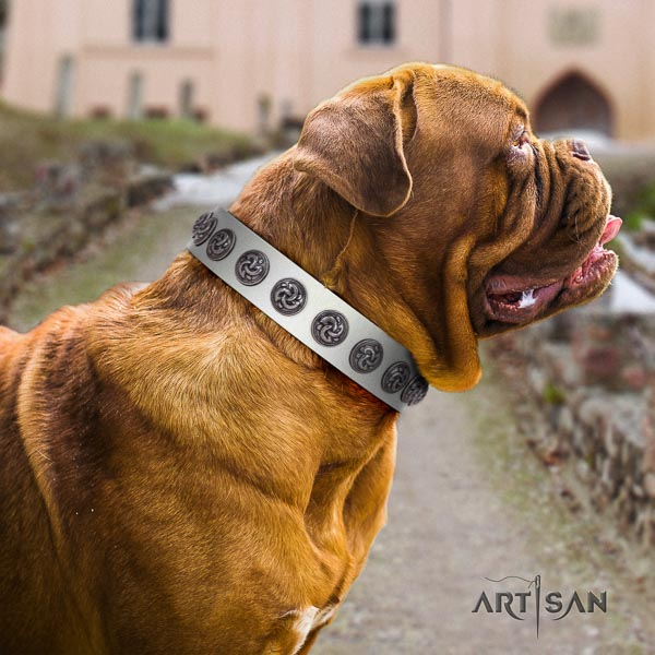 Dogue de Bordeaux trendy full grain genuine leather dog collar