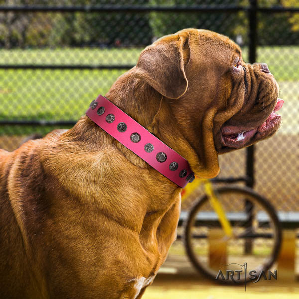 Dogue de Bordeaux inimitable natural genuine leather dog collar
