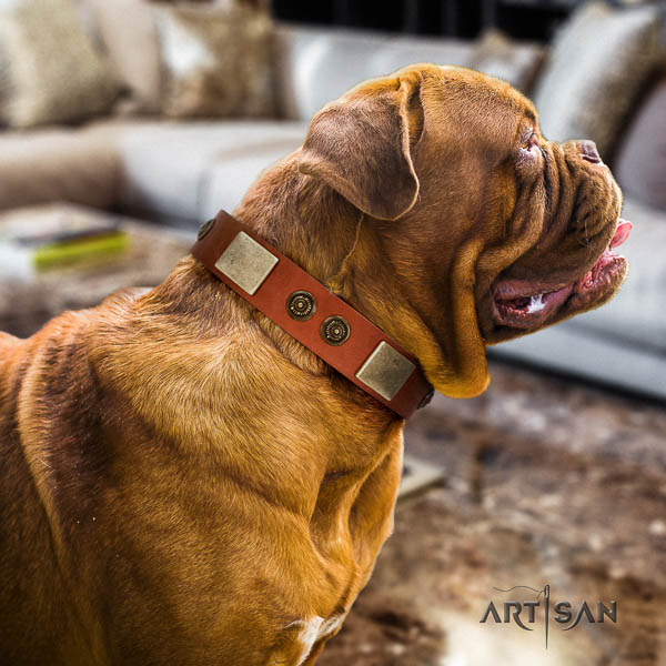Dogue de Bordeaux easy wearing dog collar of fashionable genuine leather
