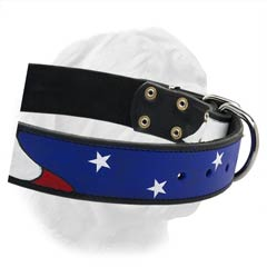 Extra Wide Dogue de Bordeaux Collar with  Stars and Stripes Painting