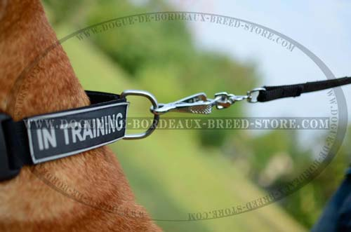 DDB Extra Strong Nylon Collar with Quick Release Buckle  for All Weathers