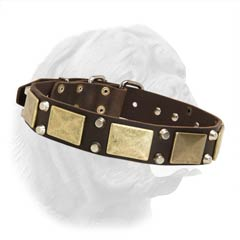 Wide Dog Collar Decorated with Vintage Style Plates and Truncated Studs